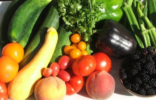 Homegrown Kentucky Produce